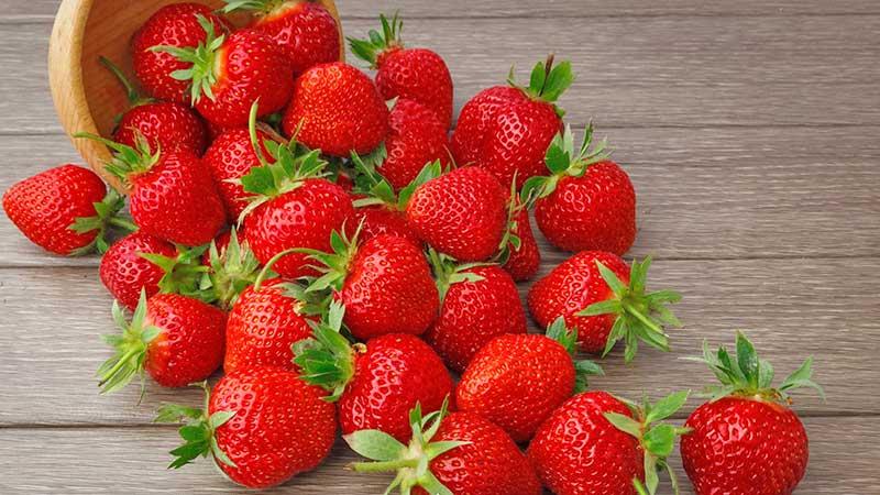 México fue el mayor exportador de fresas en 2020