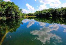 Secretaría de Turismo de Tabasco anuncia proyecto Ríos Mayas